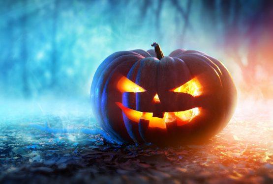 Quoi faire à Halloween cette année ?